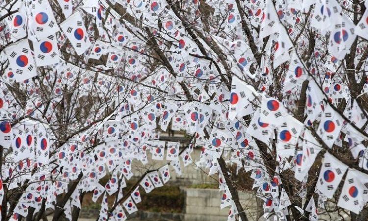 Árboles decorados con banderas de Corea del Sur