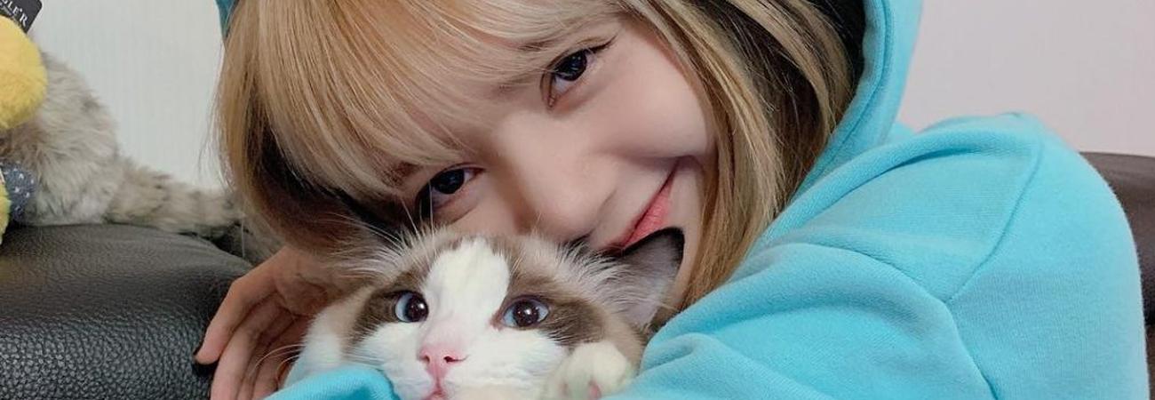 Lisa de BLACKPINK tiene un nuevo hijo felino y es adorable