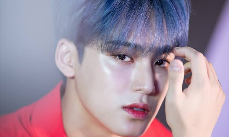 PLEDIS Entertainment actualiza el caso de Mingyu de SEVENTEEN