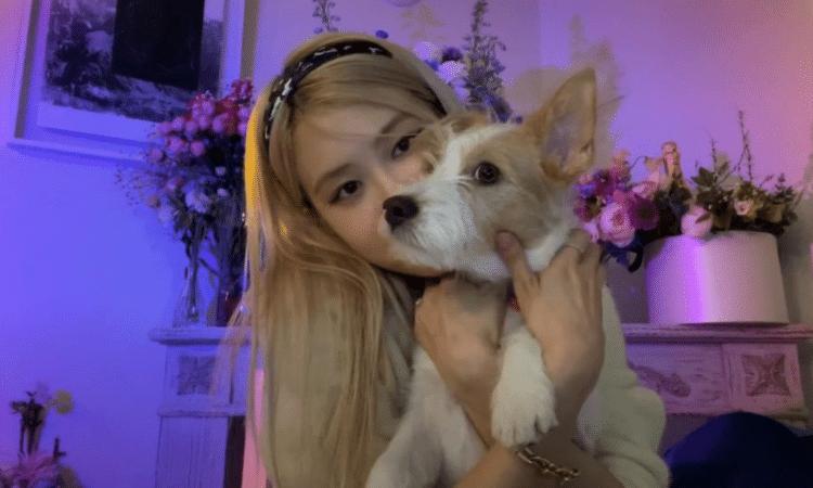 Rosé de BLACKPINK narra la conmovedora historia tras la adopción de su perro 'Hank'