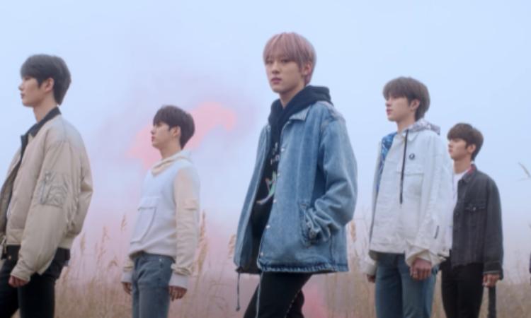 DRIPPIN comparte un encantador vídeo teaser para 'Young Blood'